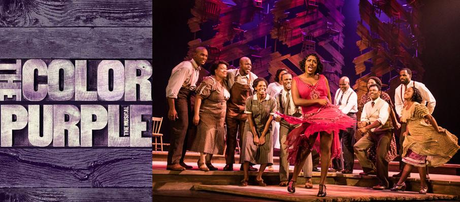 The Color Purple at Fabulous Fox Theatre
