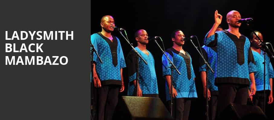 Ladysmith Black Mambazo, Sheldon Concert Hall, St. Louis