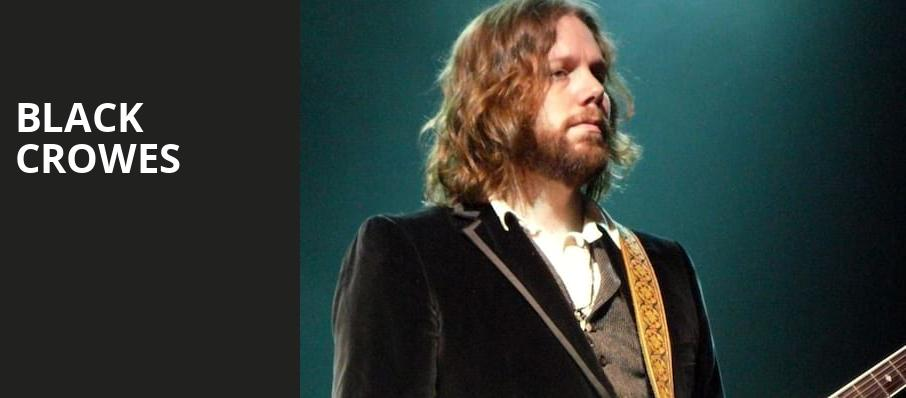 Black Crowes, Hollywood Casino Amphitheatre, St. Louis